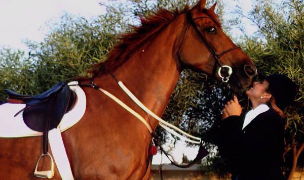 Хайя с лошадью